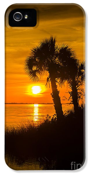 Bayou iPhone 5 Cases - Settting Sun iPhone 5 Case by Marvin Spates