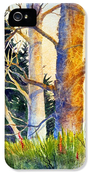 Raw Sienna iPhone 5 Cases - Shadow Patterns II iPhone 5 Case by Teresa Ascone