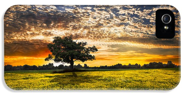 Shadows At Sunset IPhone 5 / 5s Case by Debra and Dave Vanderlaan