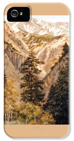 Shirley Temple Mine IPhone 5 / 5s Case by Donna Tucker