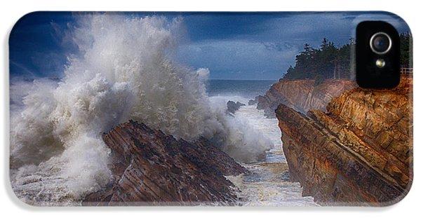 Oregon Coast Landscapes iPhone 5 Cases - Shore Acre Storm iPhone 5 Case by Darren  White