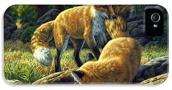Cubs iPhone 5 Cases - Red Foxes - Sibling Rivalry iPhone 5 Case by Crista Forest