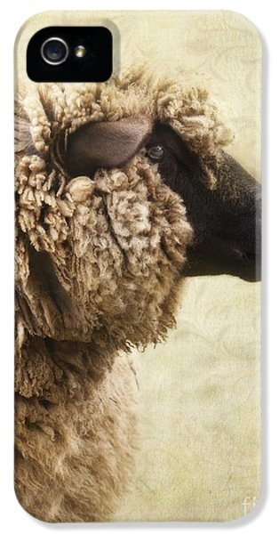 Wool iPhone 5 Cases - Side Face Of A Sheep iPhone 5 Case by Priska Wettstein