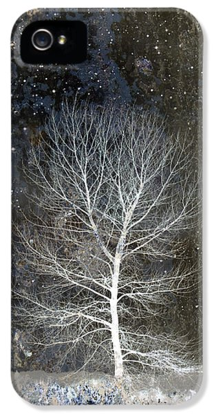 Montage iPhone 5 Cases - Silent Night iPhone 5 Case by Carol Leigh