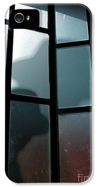Thriller iPhone 5 Cases - Silhouette on Window iPhone 5 Case by Carlos Caetano