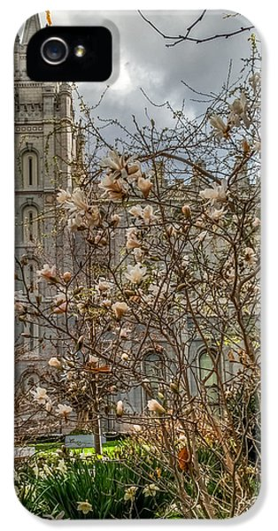 Slc iPhone 5 Cases - SLC Blossom Bush iPhone 5 Case by La Rae  Roberts