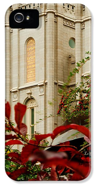 Slc iPhone 5 Cases - SLC Temple Berries Turret iPhone 5 Case by La Rae  Roberts