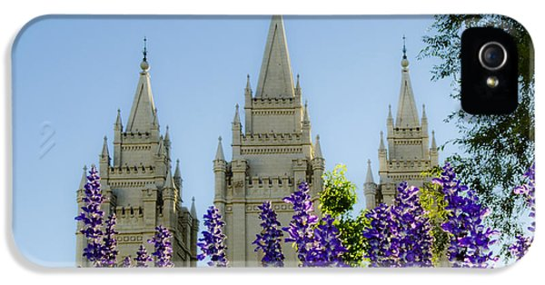 Slc iPhone 5 Cases - SLC Temple Blue flowers iPhone 5 Case by La Rae  Roberts