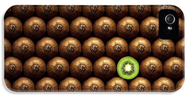 Sliced Kiwi Between Group IPhone 5 / 5s Case by Johan Swanepoel