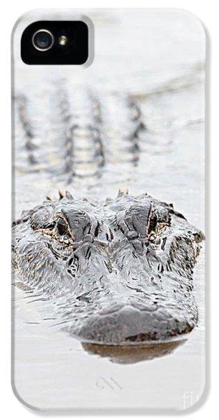 Sneaky Swamp Gator IPhone 5 / 5s Case by Carol Groenen