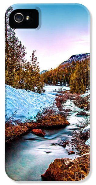 United States Of America iPhone 5 Cases - Snow Paradise iPhone 5 Case by Az Jackson