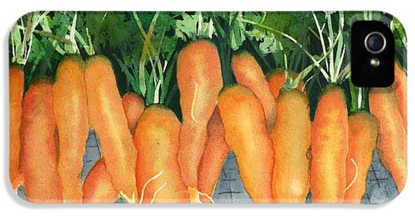 Carrot iPhone 5 Cases - So Good For You iPhone 5 Case by Marsha Elliott