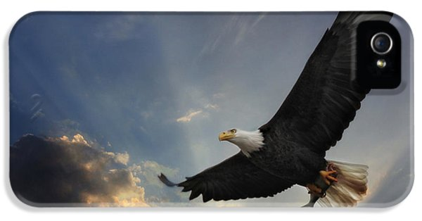 American Bald Eagle iPhone 5 Cases - Soar to new heights iPhone 5 Case by Lori Deiter