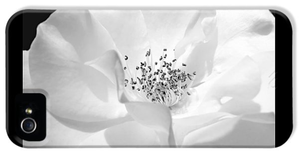 Soft Petal Rose In Black And White IPhone 5 / 5s Case by Jennie Marie Schell
