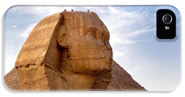 Archeology iPhone 5 Cases - Sphinx Egypt iPhone 5 Case by Jane Rix