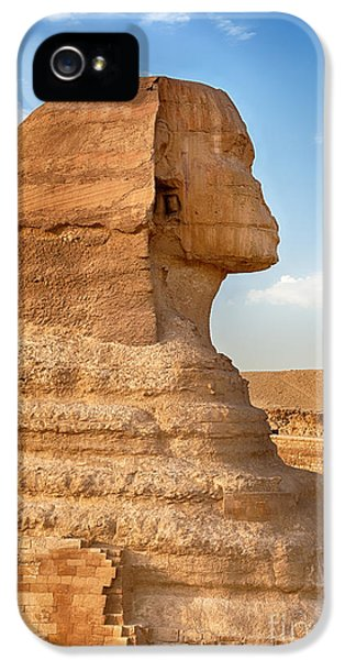 Archeology iPhone 5 Cases - Sphinx profile iPhone 5 Case by Jane Rix
