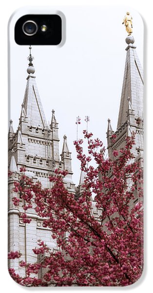 Pillar iPhone 5 Cases - Spring at the Temple iPhone 5 Case by Chad Dutson