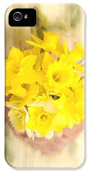 Spring Daffodils IPhone 5 / 5s Case by Edward Fielding