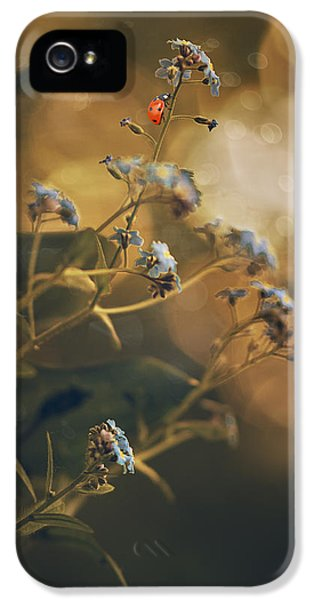 Forget Me Not iPhone 5 Cases - Spring  iPhone 5 Case by Magda  Bognar