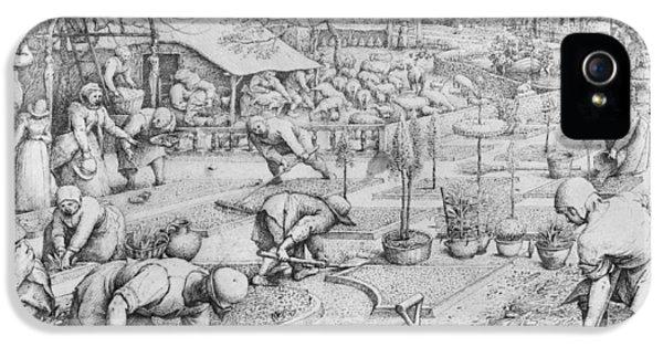 Allotment iPhone 5 Cases - Spring iPhone 5 Case by Pieter the Elder Bruegel