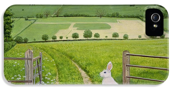 Meadow iPhone 5 Cases - Spring Rabbit iPhone 5 Case by Ditz