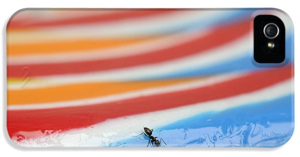 Ants iPhone 5 Cases - Sticky Rings of Saturn iPhone 5 Case by Luke Moore