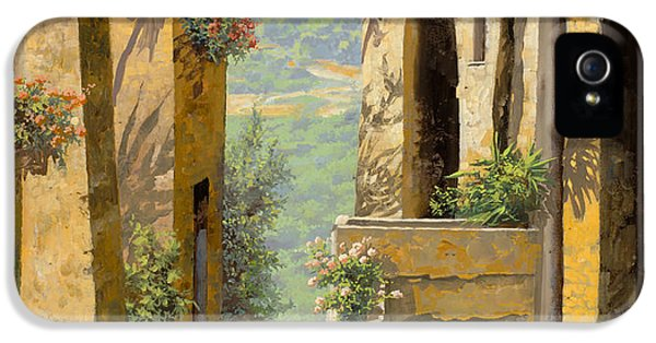 France iPhone 5 Cases - stradina a St Paul de Vence iPhone 5 Case by Guido Borelli