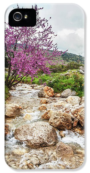Stream Coming Off Mount Herman IPhone 5 / 5s Case by Reynold Mainse