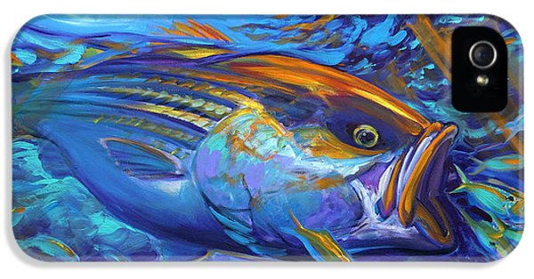Fly iPhone 5 Cases - Striper Blitz iPhone 5 Case by Mike Savlen