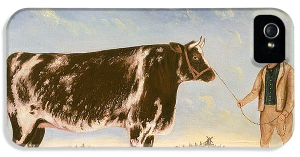 Livestock iPhone 5 Cases - Study of a Shorthorn iPhone 5 Case by William Joseph Shayer