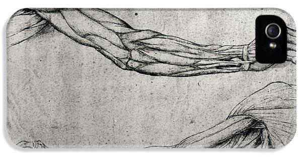 Medicine iPhone 5 Cases - Study of Arms iPhone 5 Case by Leonardo Da Vinci