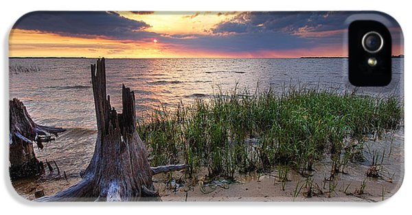 Micdesigns iPhone 5 Cases - Stumps and Sunset on Oyster Bay iPhone 5 Case by Michael Thomas