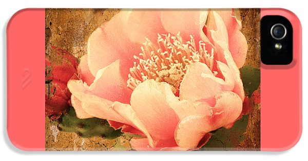 Prickly Rose iPhone 5 Cases - Stunning Pink Prickly Pear iPhone 5 Case by Beverly Guilliams