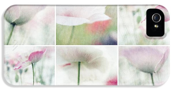 Lensbaby iPhone 5 Cases - Suffused With Light Collage iPhone 5 Case by Priska Wettstein