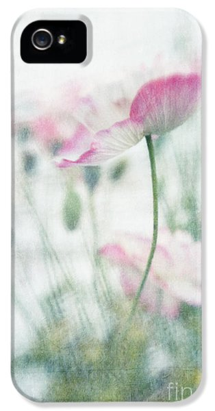 High Key iPhone 5 Cases - suffused with light III iPhone 5 Case by Priska Wettstein