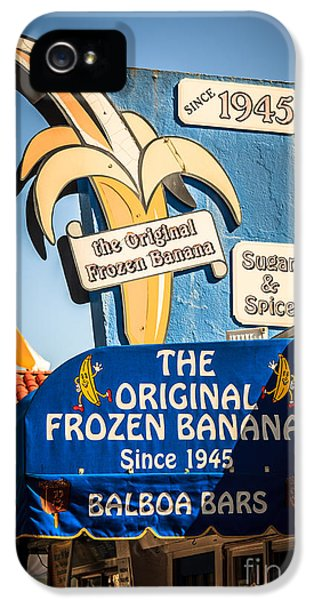 Newport Beach iPhone 5 Cases - Sugar and Spice Frozen Banana Sign on Balboa Island iPhone 5 Case by Paul Velgos