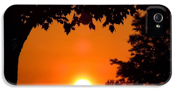 Central Il iPhone 5 Cases - Summer Sunrise Right Side iPhone 5 Case by Thomas Woolworth
