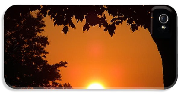 Central Il iPhone 5 Cases - Summer Sunrise iPhone 5 Case by Thomas Woolworth