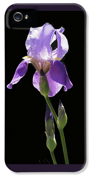 Sun-drenched Iris IPhone 5 / 5s Case by Rona Black