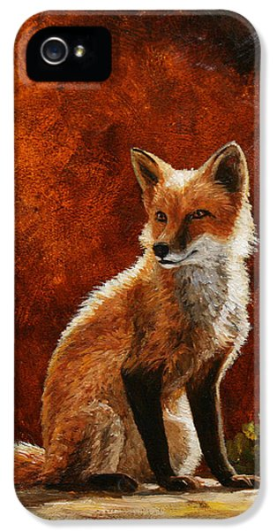 Red Fox iPhone 5 Cases - Sun Fox iPhone 5 Case by Crista Forest