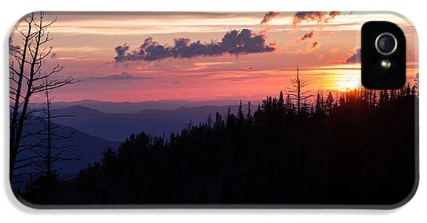 National Monuments iPhone 5 Cases - Sun Over Cedar iPhone 5 Case by Chad Dutson