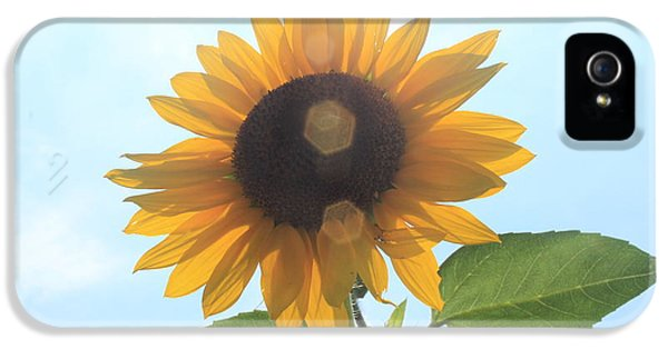 Lotus iPhone 5 Cases - Sunflower with Flare 1 iPhone 5 Case by Lotus