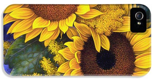 Feature iPhone 5 Cases - Sunflowers iPhone 5 Case by Mia Tavonatti