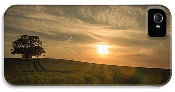 Agricultural iPhone 5 Cases - Sunlight across the crops iPhone 5 Case by Chris Fletcher