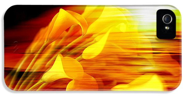 Sunrise IPhone 5 / 5s Case by Marvin Blaine