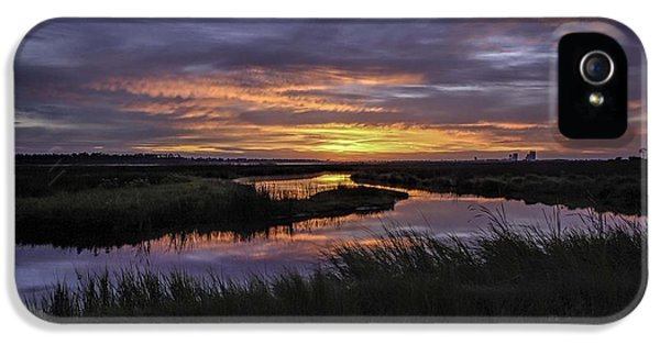 Micdesigns iPhone 5 Cases - Sunrise on Lake Shelby iPhone 5 Case by Michael Thomas