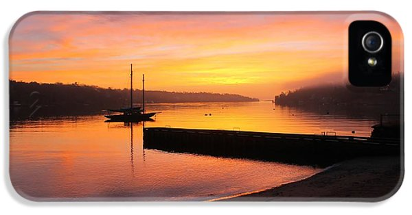 Arctic Rose iPhone 5 Cases - Sunrise over the Dingle iPhone 5 Case by Dave Lahn