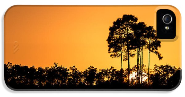 Sky iPhone 5 Cases - Sunset at Long Pine Key Pond iPhone 5 Case by Andres Leon