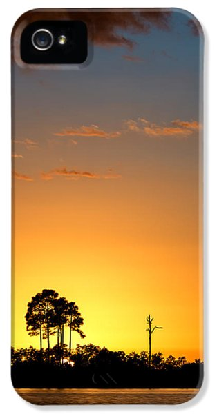 Outdoors iPhone 5 Cases - Sunset at Long Pine Key Vertical iPhone 5 Case by Andres Leon