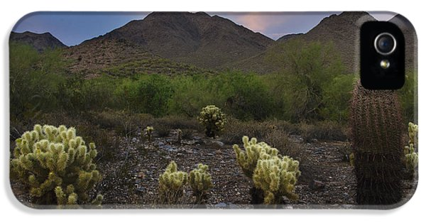 Pink Sunrise iPhone 5 Cases - Sunset at McDowell Mountains in Scottsdale AZ USA iPhone 5 Case by Dave Dilli